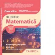 Culegere de matematica. Clasa a IX-a. Semestrul I. Filiera teoretica, specializarea matematica-informatica - Marius Burtea, Georgeta Burtea
