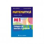 Matematica M1 - culegere pentru clasa a XII-a