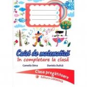 Caiet de matematica in completare la clasa. Clasa pregatitoare - Camelia Sima