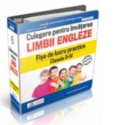 Culegere pentru invatarea limbii engleze - Fise de lucru practice Clasele 0-IV - Daniela Stefania Ionescu