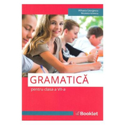 Gramatica pentru clasa a VII-a - Mihaela Georgescu, Nicoleta Ionescu