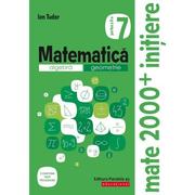 Matematica 2000 Initiere. Algebra, geometrie. Caiet de lucru, clasa a VII-a. Partea a II-a - Ion Tudor
