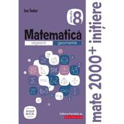 Matematica 2000 Initiere. Algebra, geometrie. Caiet de lucru, clasa a VIII-a. Partea a II-a - Ion Tudor
