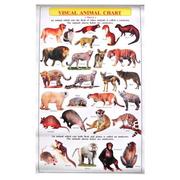 Visual Animal Chart. Level 2