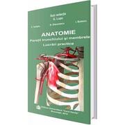 Anatomie. Peretii trunchiului si membrele. Lucrari practice - G. Lupu