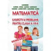 Matematica, exercitii si probleme pentru clasa a VII-a, semestrul I - Delia Schneider