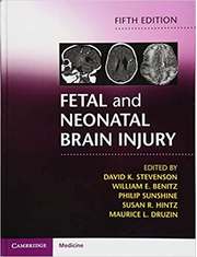 Fetal and Neonatal Brain Injury - David K. Stevenson, William E. Benitz, Philip Sunshine, Susan R. Hintz, Maurice L. Druzin