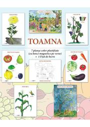 Set planse - TOAMNA, format A4