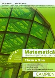 Matematica - Probleme si exercitii, teste pentru clasa a XI-a