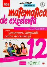 MATEMATICA DE EXCELENTA PENTRU CONCURSURI, OLIMPIADE SI CENTRE DE EXCELENTA. CLASA A 12-A. VOLUMUL I - ALGEBRA