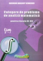 CULEGERE DE PROBLEME DE ANALIZA MATEMATICA PENTRU CLASELE XI-XII