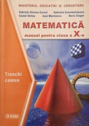 Matematica - manual pentru clasa a X-a (trunchi comun si curriculum diferentiat)