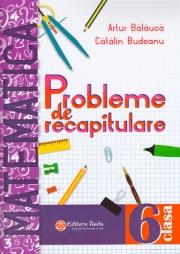 Matematica probleme de recapitulare pentru clasa a VI-a