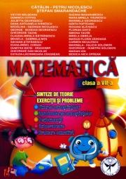 Matematica - Exercitii si probleme, Sinteze si teorie Clasa a VII-a