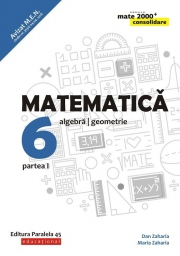 Matematica - CONSOLIDARE (2018 - 2019) - Aritmetica, alegebra, geometrie, pentru clasa a VI-a. Partea I (Colectia mate 2000+)
