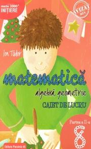 Matematica 2000 Initiere. Algebra, geometrie. Caiet de lucru, clasa a VIII-a. Partea a II-a